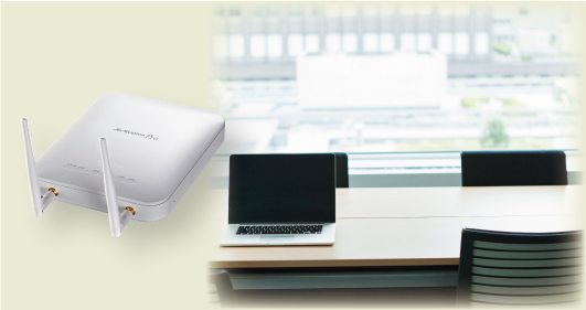 Dual Band Wireless Access Point